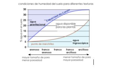 Condiciones de humedad del suelo para diferentes texturas.